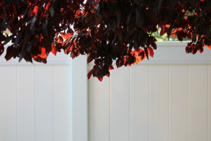 this picture shows pvc fence installation san diego